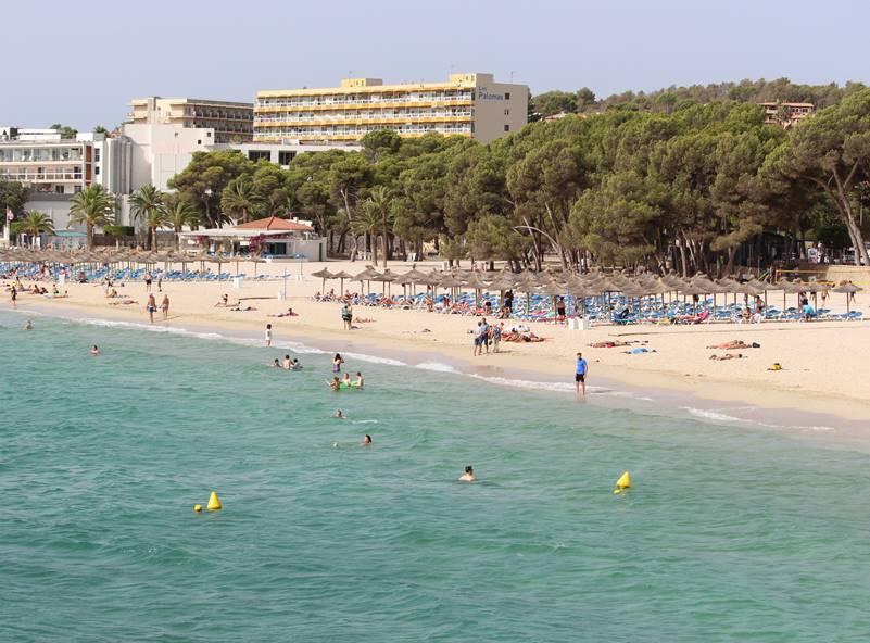 playa de palmanova extensa playa de arena